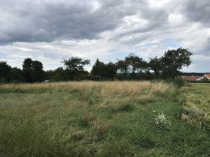 Pozemek-Maršov