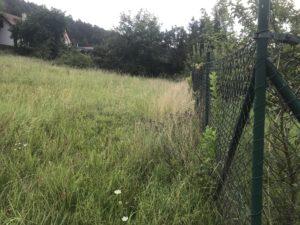 Pozemek v obci Hradčany