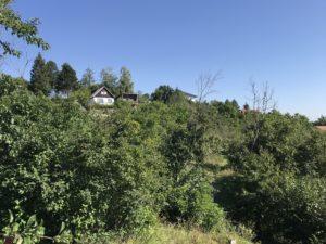 Zahrada Nebovidy