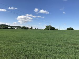 Pozemky za Toskou